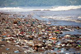 Ocean Pollution and its Effects