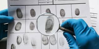 What does a Forensic Science student do in college?
