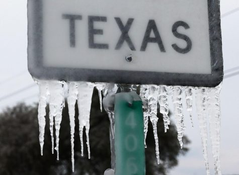 Texas Farmers Tally Up the Damage From a Winter Storm 'Massacre'