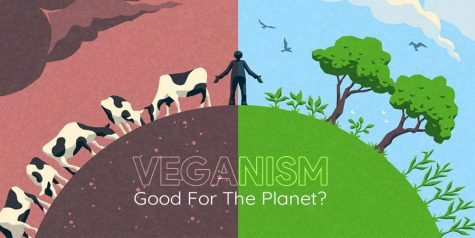 Veganism and its Consequences
